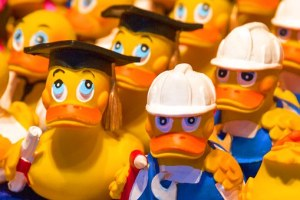 bath-duck-574922__340